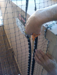 Zippers has been installed into the netting and now we are cutting the net to allow the zipper to function property.
